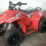 New quadzilla Buzz 50cc