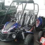 Quadzilla cheetagh 150cc buggy