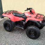 Suzuki 500 King quad
