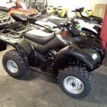 New suzuki ozark 250
